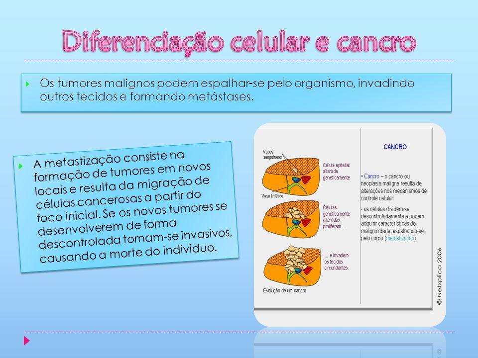 Os tumores malignos podem espalhar-se pelo organismo, invadindo outros tecidos e formando metástases. A metastização consiste na formação de tumores e