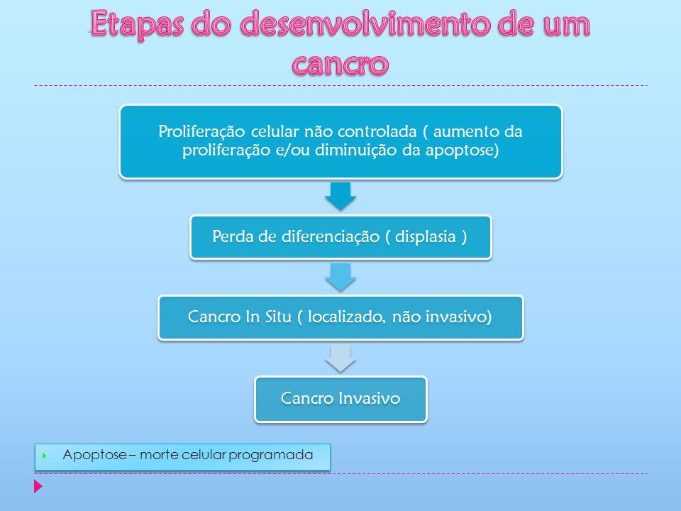 Proliferação celular não controlada ( aumento da proliferação e/ou diminuição da apoptose) Perda de diferenciação ( displasia ) Cancro In Situ ( local