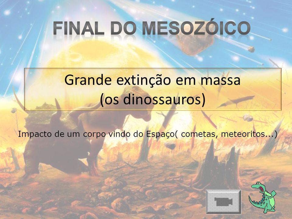 Grande extinção em massa (os dinossauros) Impacto de um corpo vindo do Espaço( cometas, meteoritos...)