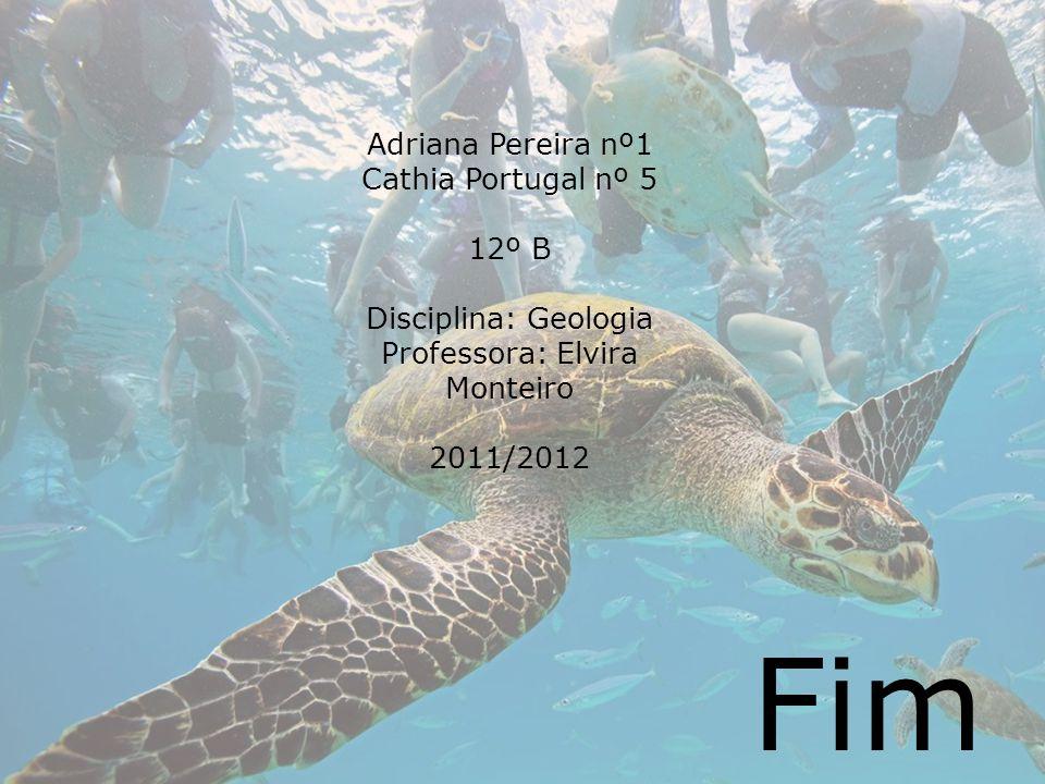 Adriana Pereira nº1 Cathia Portugal nº 5 12º B Disciplina: Geologia Professora: Elvira Monteiro 2011/2012 Fim