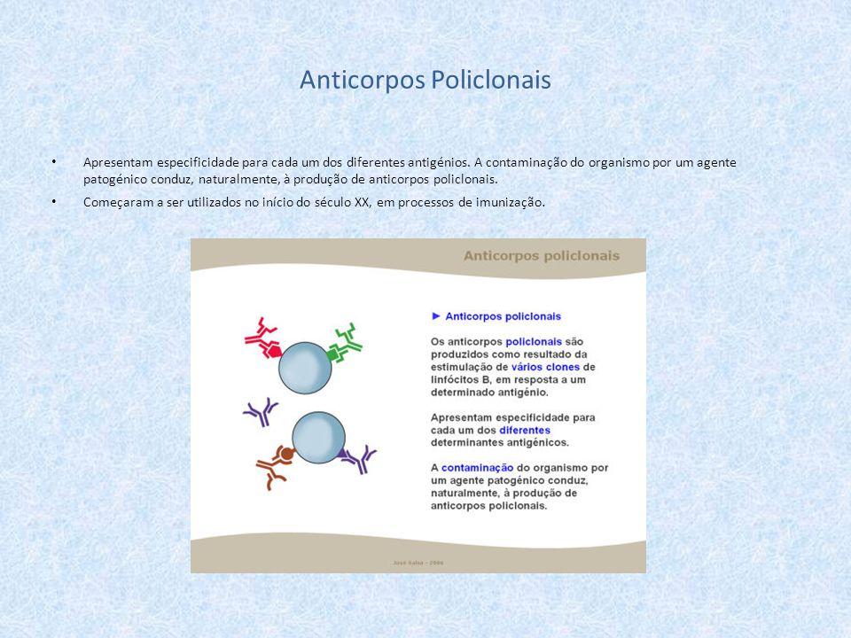 Apresentam especificidade para cada um dos diferentes antigénios. A contaminação do organismo por um agente patogénico conduz, naturalmente, à produçã
