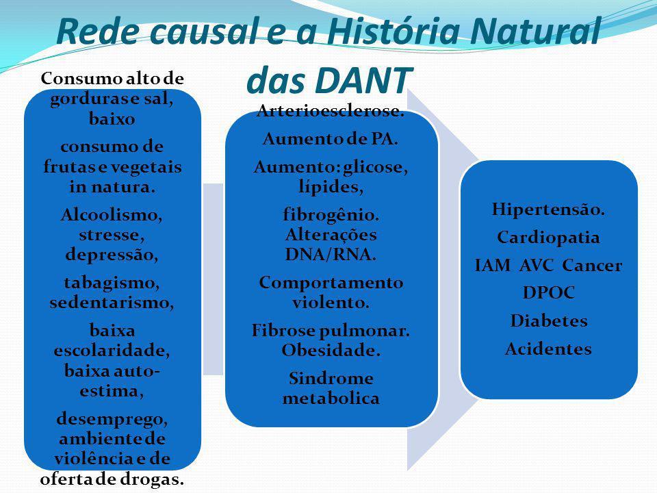 Rede causal e a História Natural das DANT Consumo alto de gorduras e sal, baixo consumo de frutas e vegetais in natura. Alcoolismo, stresse, depressão