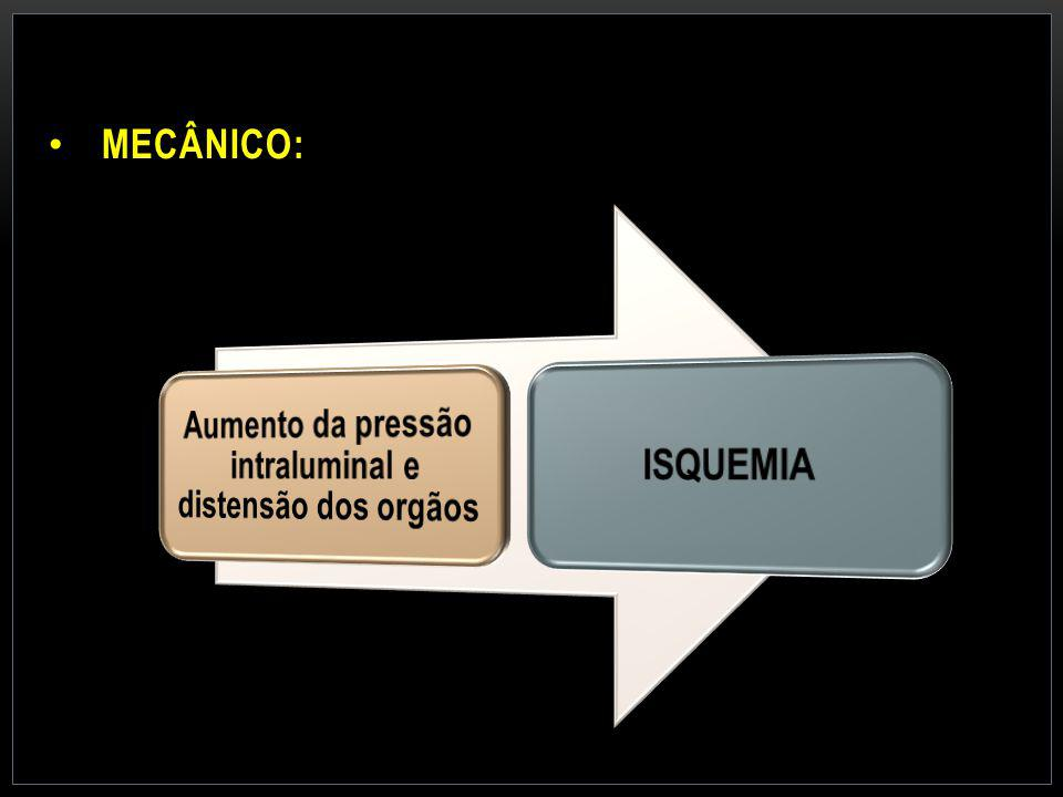 MECÂNICO: