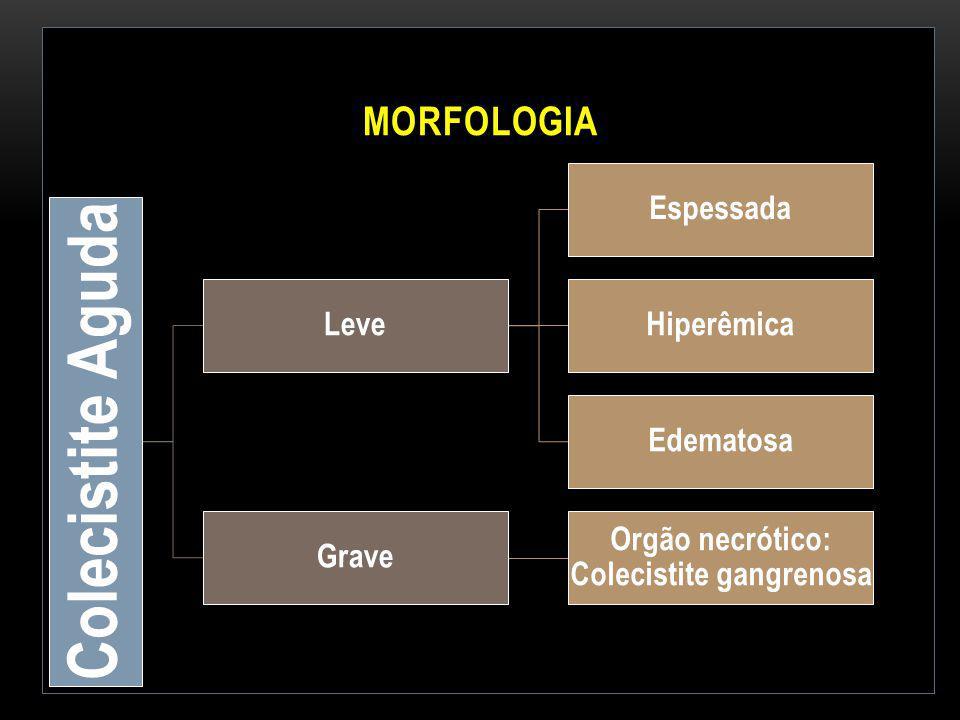 MORFOLOGIA Colecistite Aguda Leve Espessada Hiperêmica Edematosa Grave Orgão necrótico: Colecistite gangrenosa
