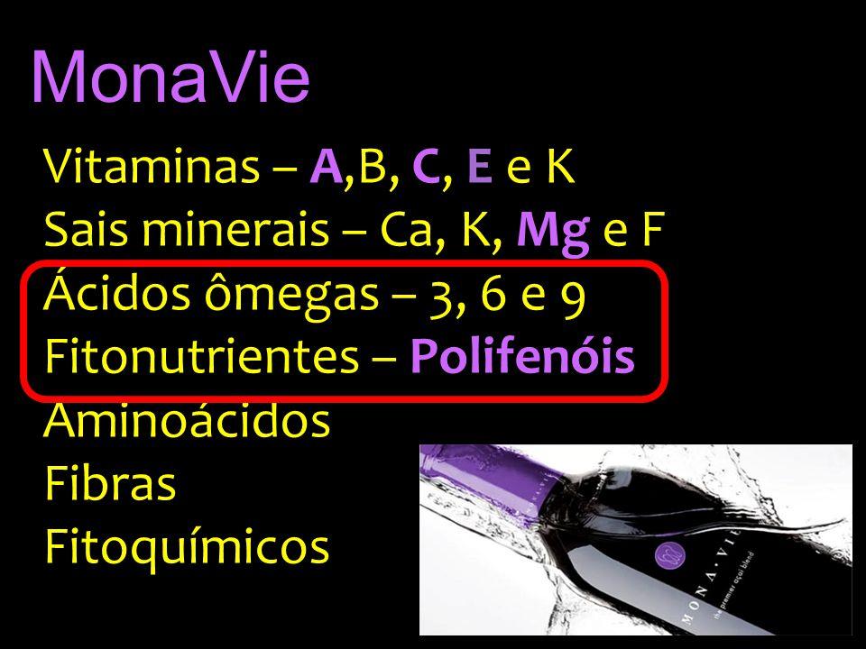 MonaVie Vitaminas – A,B, C, E e K Sais minerais – Ca, K, Mg e F Ácidos ômegas – 3, 6 e 9 Fitonutrientes – Polifenóis Aminoácidos Fibras Fitoquímicos