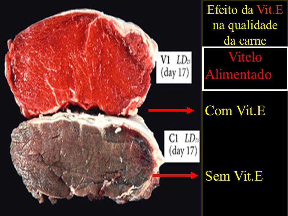 Efeito da Vit.E na qualidade da carne Vitelo Alimentado Com Vit.E Sem Vit.E
