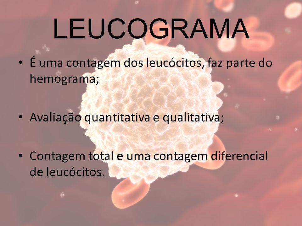 LEUCOGRAMA É uma contagem dos leucócitos, faz parte do hemograma; Avaliação quantitativa e qualitativa; Contagem total e uma contagem diferencial de l