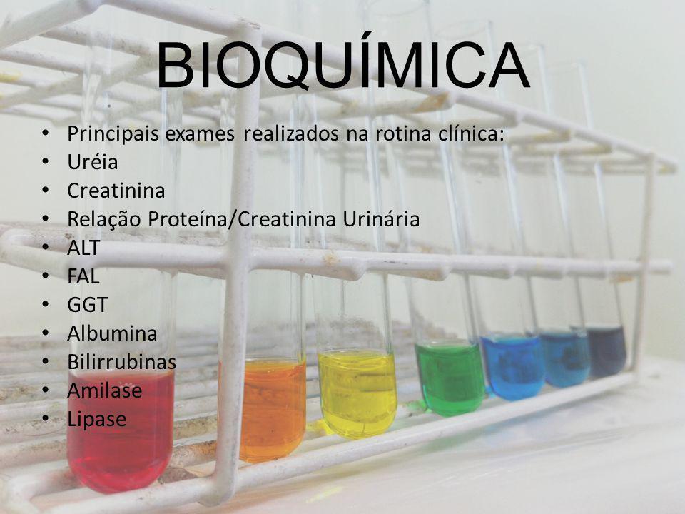 BIOQUÍMICA Principais exames realizados na rotina clínica: Uréia Creatinina Relação Proteína/Creatinina Urinária ALT FAL GGT Albumina Bilirrubinas Ami
