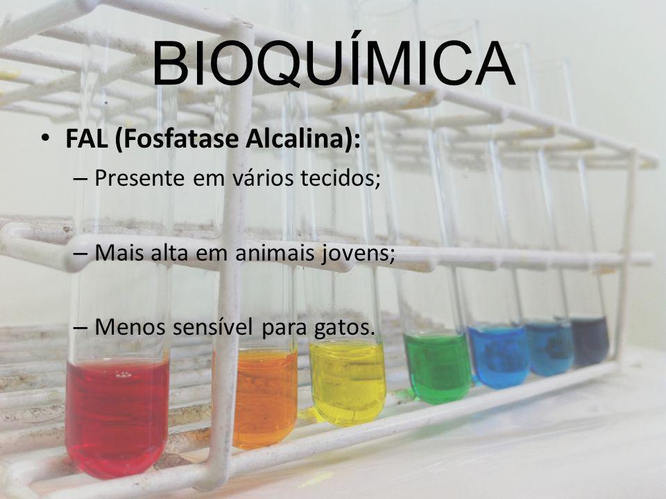 BIOQUÍMICA FAL (Fosfatase Alcalina): – Presente em vários tecidos; – Mais alta em animais jovens; – Menos sensível para gatos.