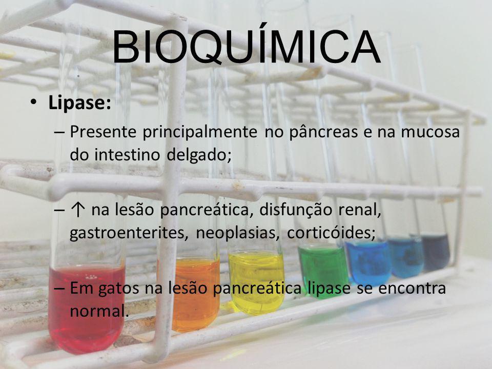 BIOQUÍMICA Lipase: – Presente principalmente no pâncreas e na mucosa do intestino delgado; – na lesão pancreática, disfunção renal, gastroenterites, n