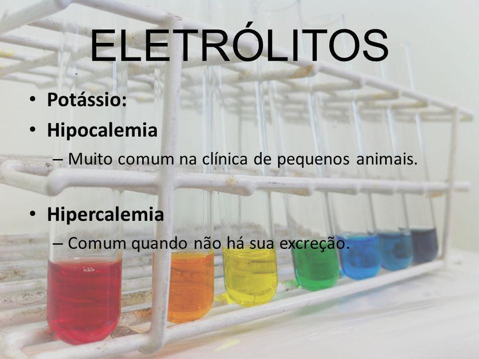 ELETRÓLITOS Potássio: Hipocalemia – Muito comum na clínica de pequenos animais. Hipercalemia – Comum quando não há sua excreção.