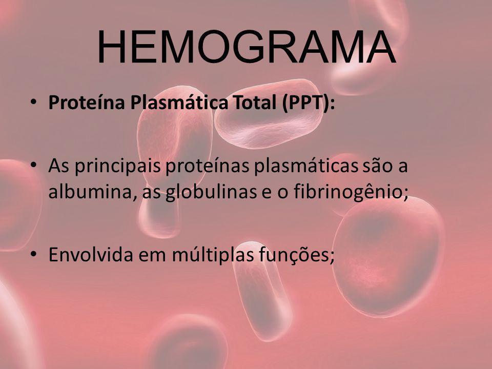 HEMOGRAMA Proteína Plasmática Total (PPT): As principais proteínas plasmáticas são a albumina, as globulinas e o fibrinogênio; Envolvida em múltiplas