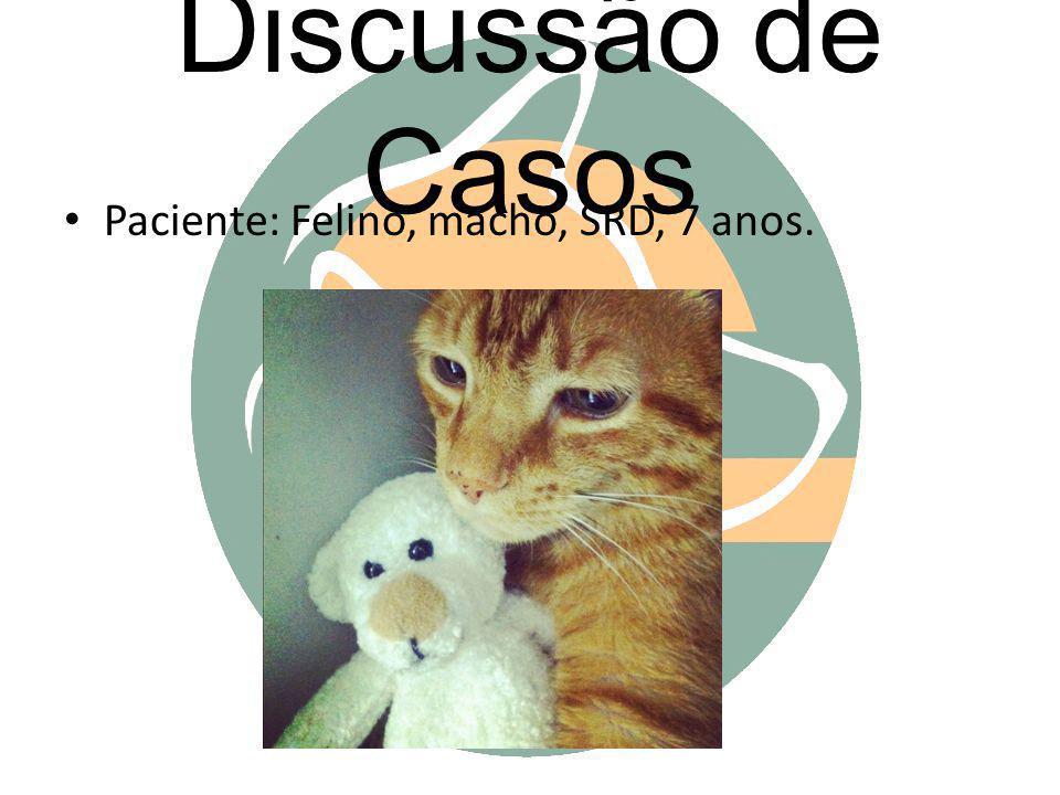 Discussão de Casos Paciente: Felino, macho, SRD, 7 anos.