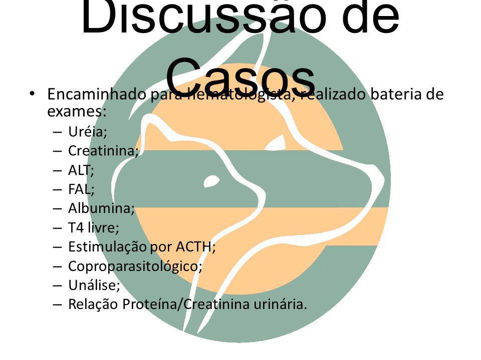 Discussão de Casos Encaminhado para hematologista, realizado bateria de exames: – Uréia; – Creatinina; – ALT; – FAL; – Albumina; – T4 livre; – Estimul