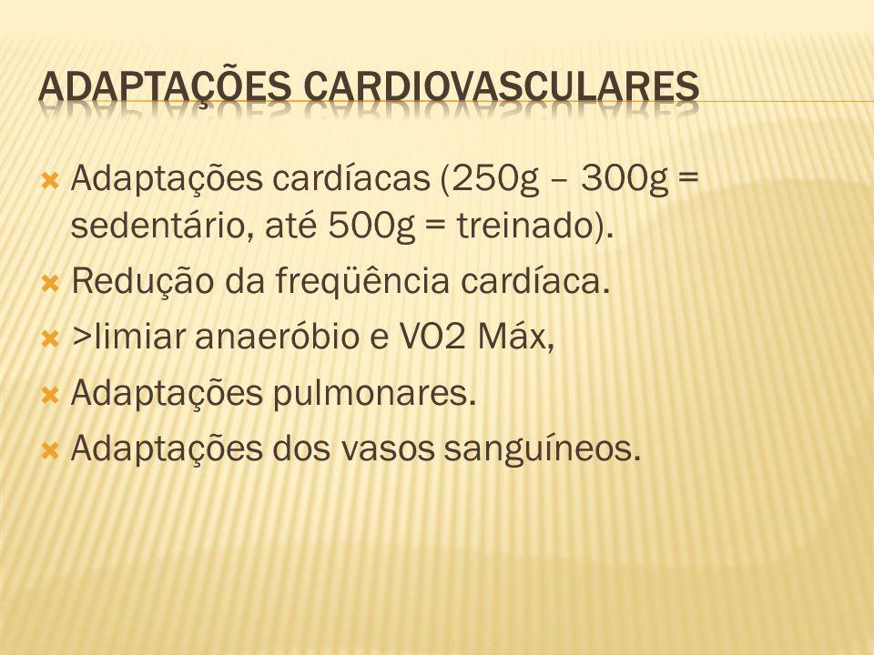 Adaptações cardíacas (250g – 300g = sedentário, até 500g = treinado). Redução da freqüência cardíaca. >limiar anaeróbio e VO2 Máx, Adaptações pulmonar