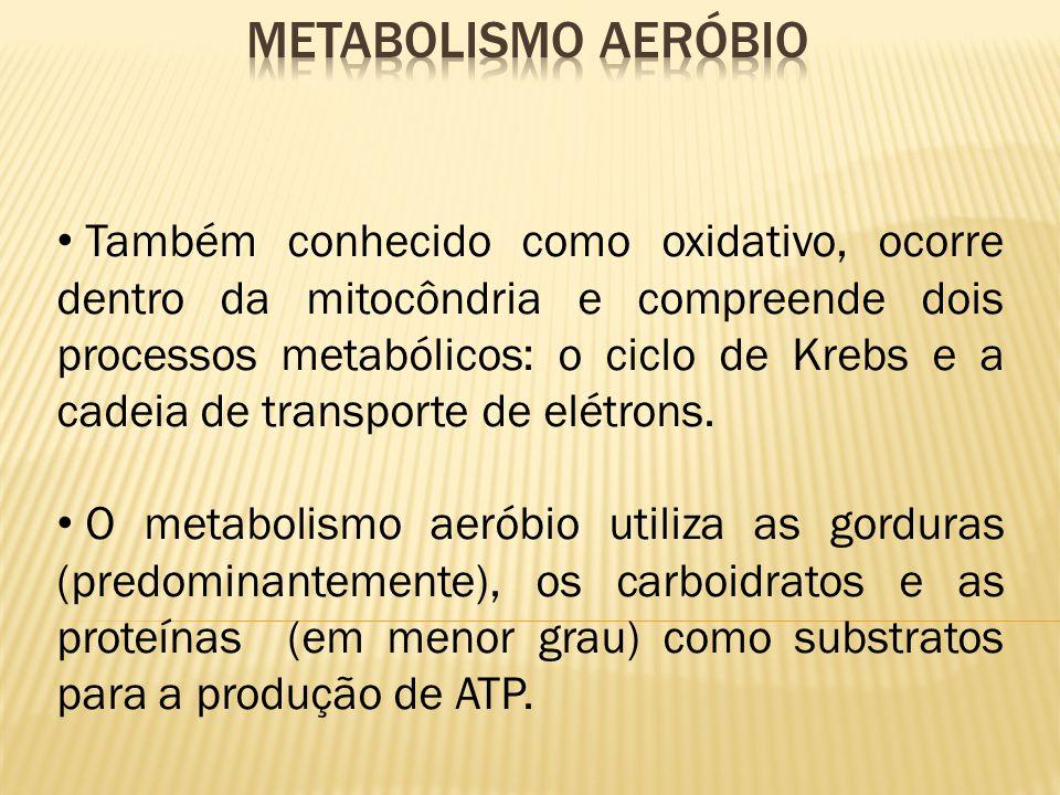 Também conhecido como oxidativo, ocorre dentro da mitocôndria e compreende dois processos metabólicos: o ciclo de Krebs e a cadeia de transporte de el