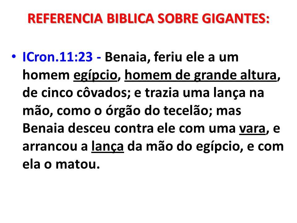 ICron.11:23 - Benaia, feriu ele a um homem egípcio, homem de grande altura, de cinco côvados; e trazia uma lança na mão, como o órgão do tecelão; mas