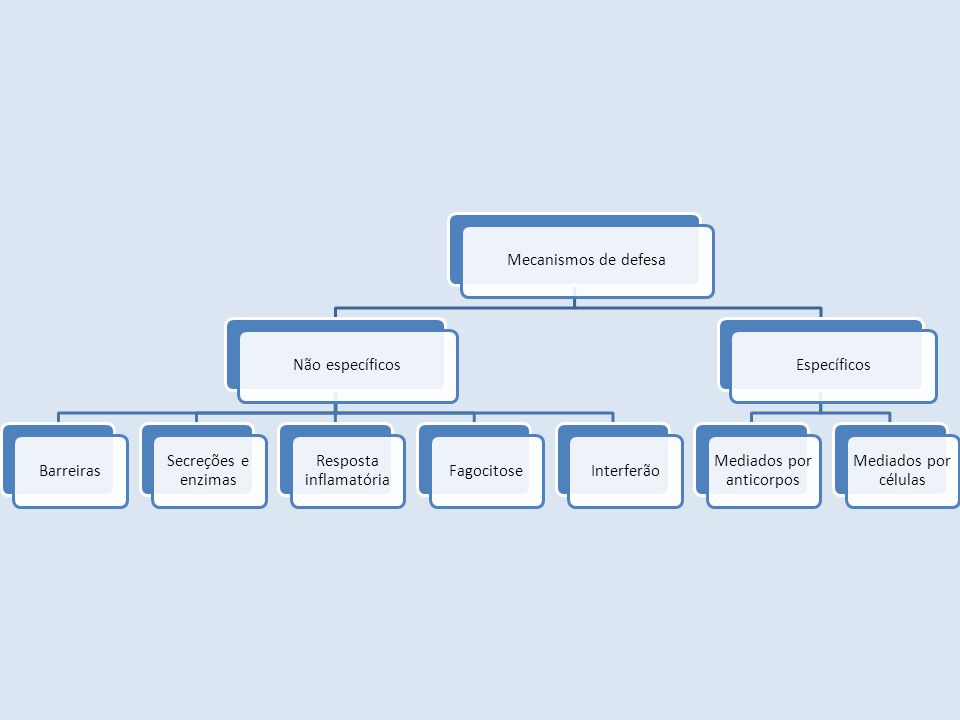 Mecanismos de defesaNão específicosBarreiras Secreções e enzimas Resposta inflamatória FagocitoseInterferãoEspecíficos Mediados por anticorpos Mediados por células