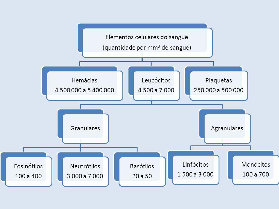 Elementos celulares do sangue (quantidade por mm 3 de sangue) Hemácias 4 500 000 a 5 400 000 Leucócitos 4 500 a 7 000 Granulares Eosinófilos 100 a 400
