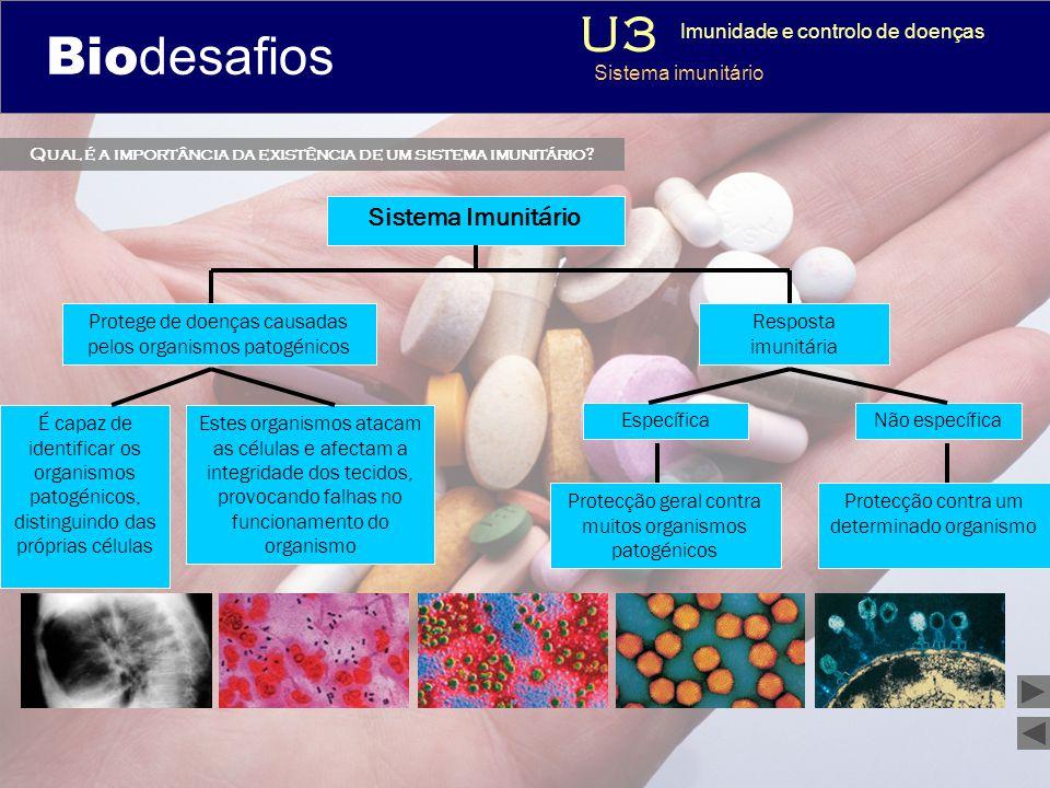 Biodesafios 12 Qual é a importância da existência de um sistema imunitário? 3 Imunidade e controlo de doenças Sistema imunitário Sistema Imunitário É