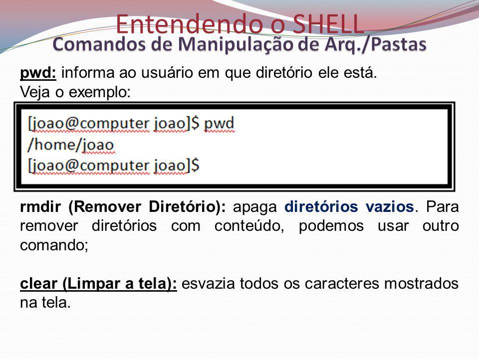 Entendendo o SHELL pwd: informa ao usuário em que diretório ele está.