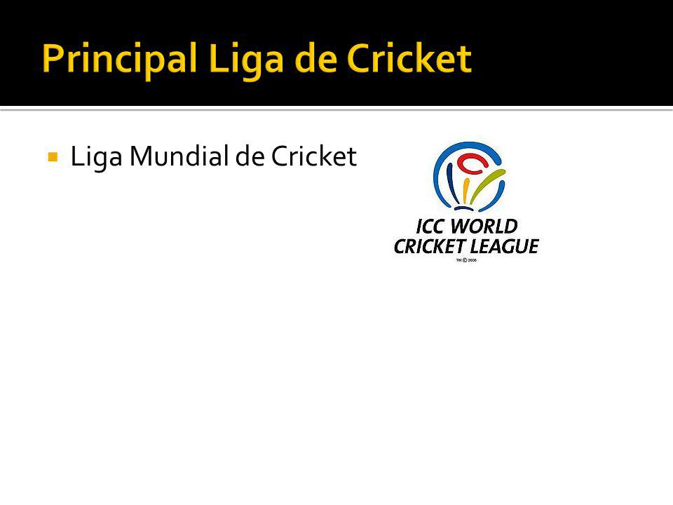 Liga Mundial de Cricket