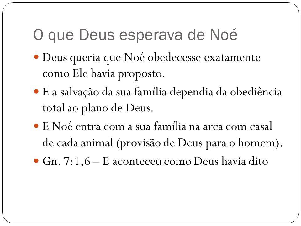 O que Deus esperava de Noé Deus queria que Noé obedecesse exatamente como Ele havia proposto.