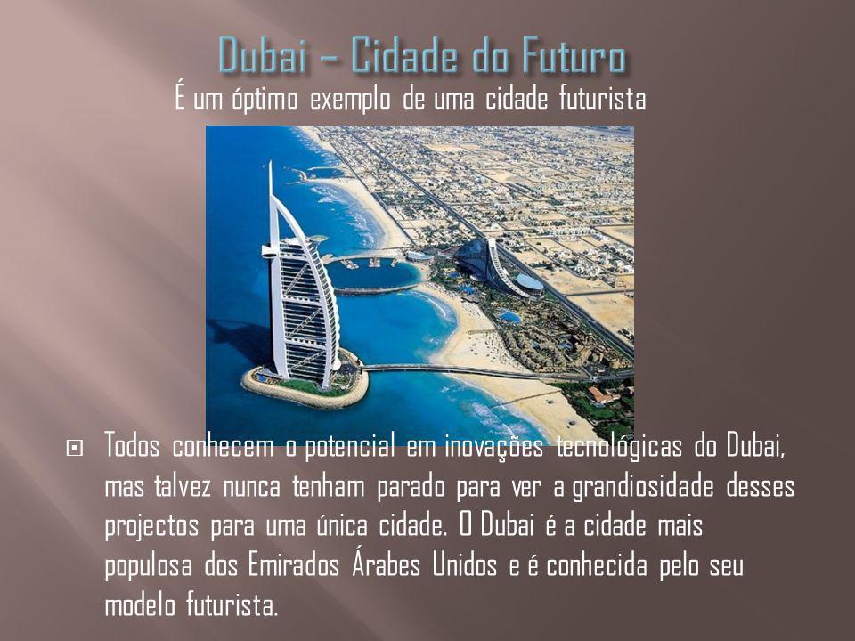 Todos conhecem o potencial em inovações tecnológicas do Dubai, mas talvez nunca tenham parado para ver a grandiosidade desses projectos para uma única