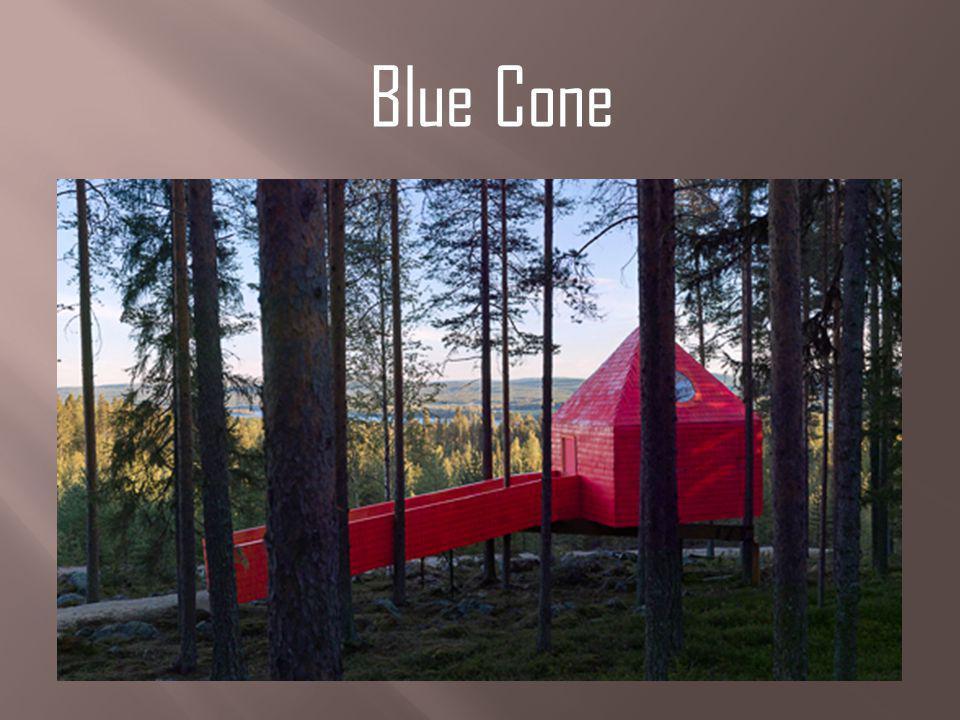 Blue Cone