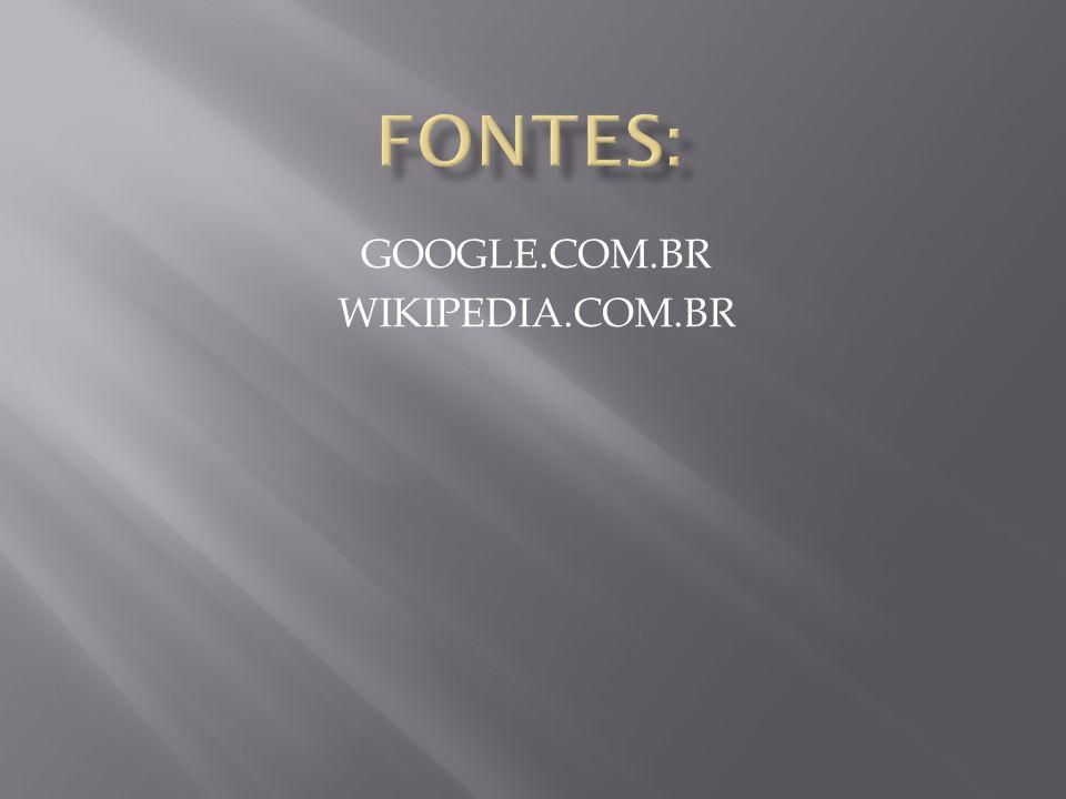 GOOGLE.COM.BR WIKIPEDIA.COM.BR