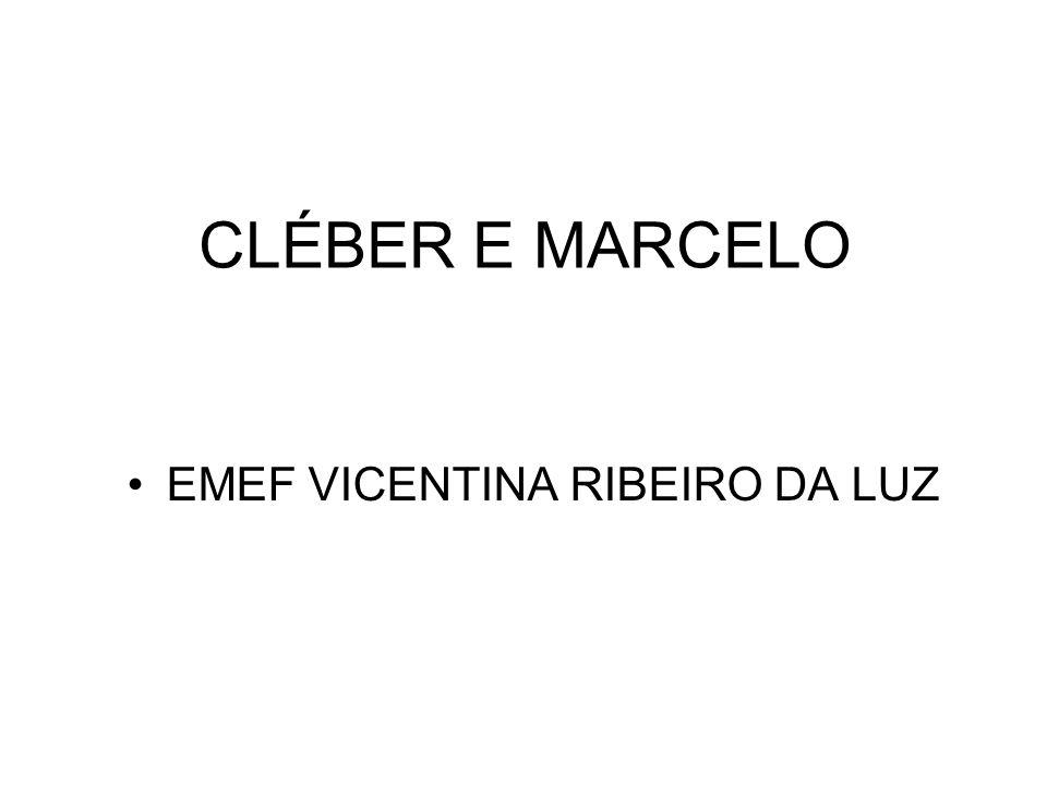 CLÉBER E MARCELO EMEF VICENTINA RIBEIRO DA LUZ