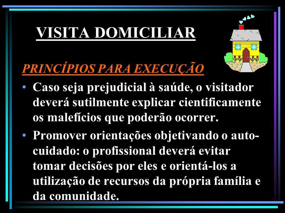 VISITA DOMICILIAR PRINCÍPIOS PARA EXECUÇÃO Utilizar de vocabulário adequado e dosar as informações a serem transmitidas A visita deve ser encarada de forma profissional e não social.
