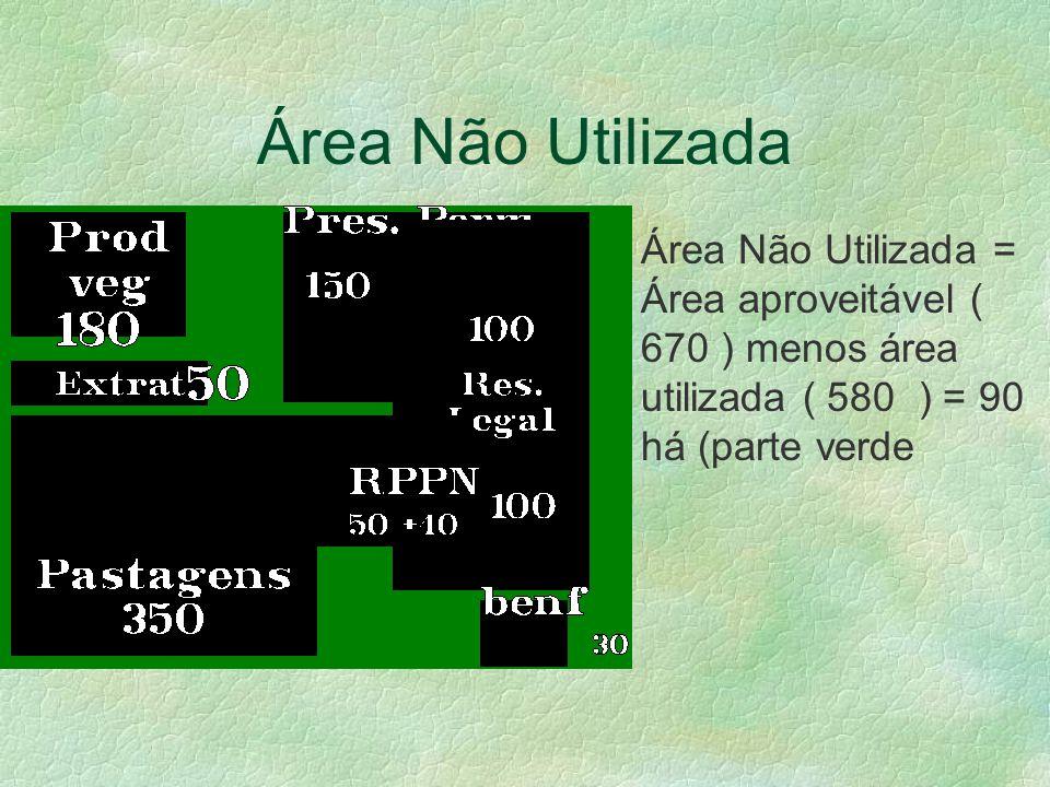 Área Não Utilizada Área Não Utilizada = Área aproveitável ( 670 ) menos área utilizada ( 580 ) = 90 há (parte verde