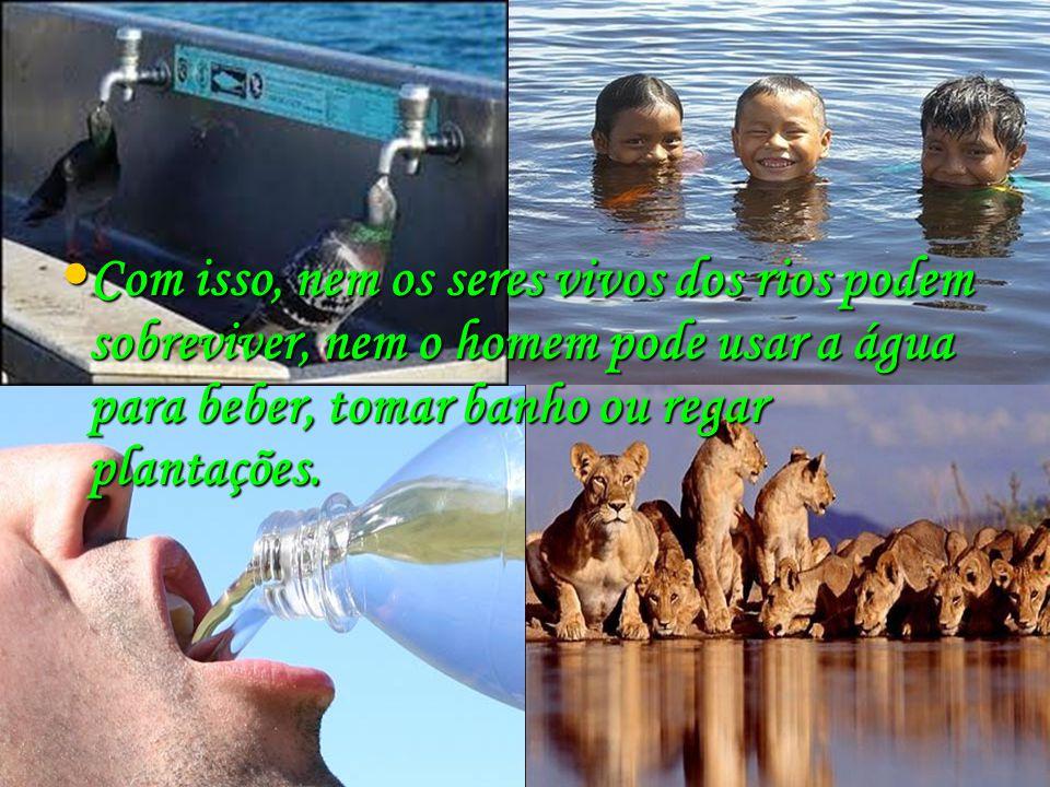 Com isso, nem os seres vivos dos rios podem sobreviver, nem o homem pode usar a água para beber, tomar banho ou regar plantações. Com isso, nem os ser