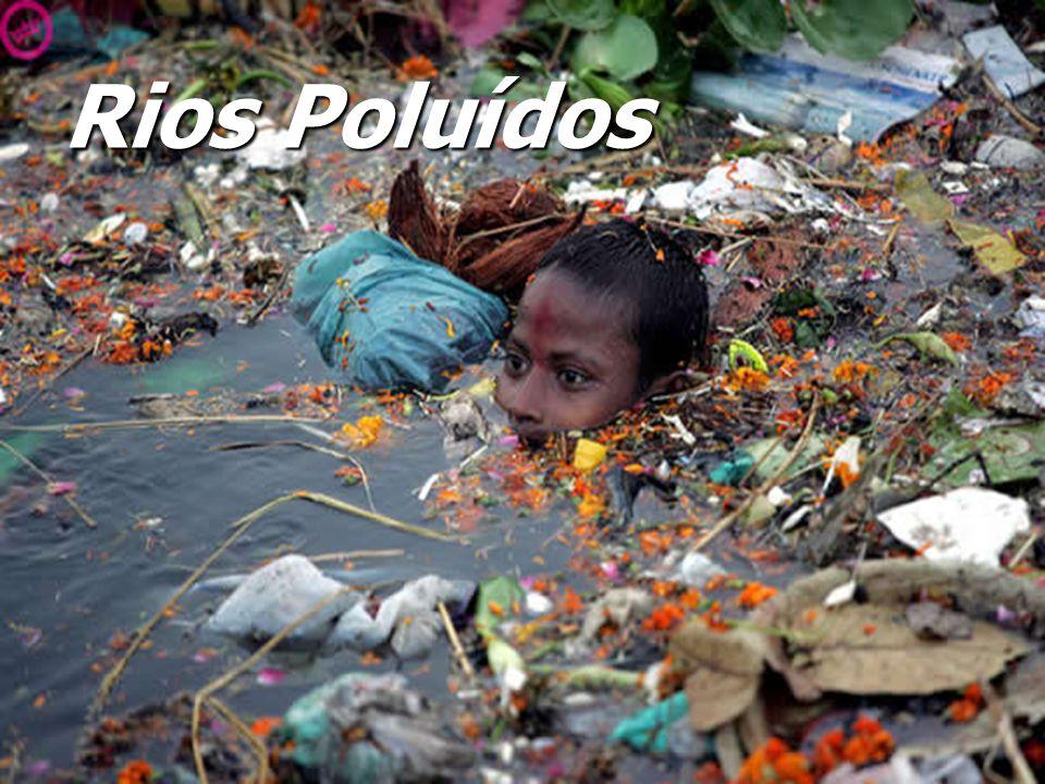 A Poluição dos Rios, a Vida das Pessoas e da Natureza