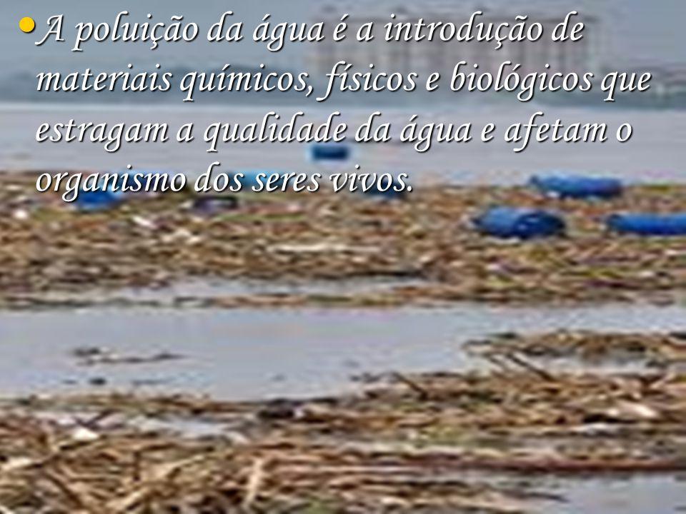 Talvez mais perigosa do que o lixo dos esgotos é a poluição química das indústrias, que jogam toneladas e mais toneladas de produtos químicos diretamente nos rios, sem qualquer processo de filtragem.