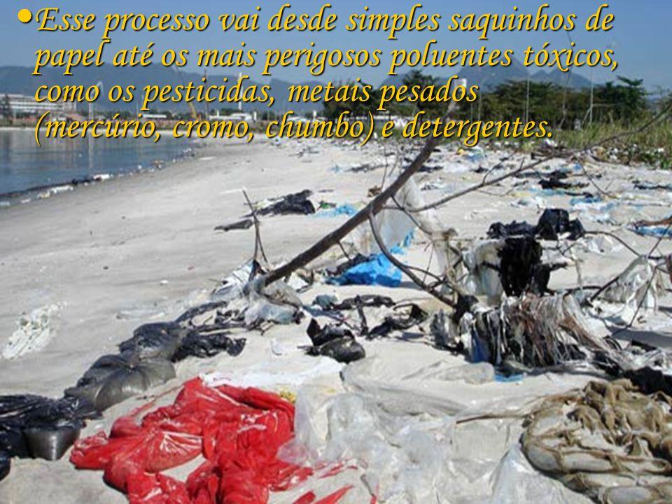 A poluição mais comum é aquela causada pelo lixo que o homem joga nos rios.