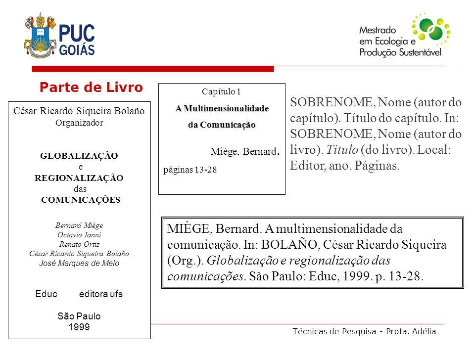 Técnicas de Pesquisa - Profa. Adélia Parte de Livro César Ricardo Siqueira Bolaño Organizador GLOBALIZAÇÃO e REGIONALIZAÇÃO das COMUNICAÇÕES Bernard M