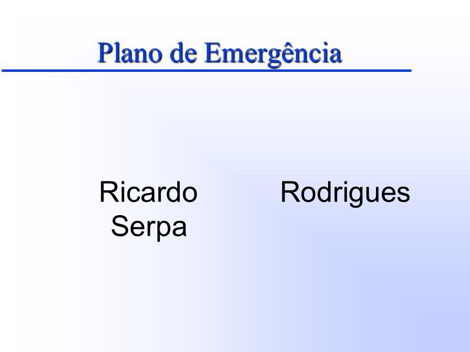 Plano de Emergência Objetivo Fornecer um conjunto de diretrizes e informações visando a adoção de procedimentos lógicos, técnicos e administrativos, estruturados de forma a propiciar resposta rápida e eficiente em situações emergenciais.