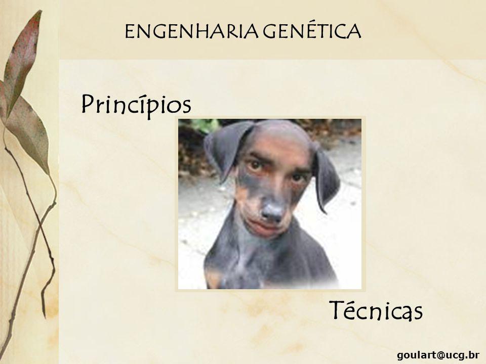 ENGENHARIA GENÉTICA Princípios Técnicas goulart@ucg.br