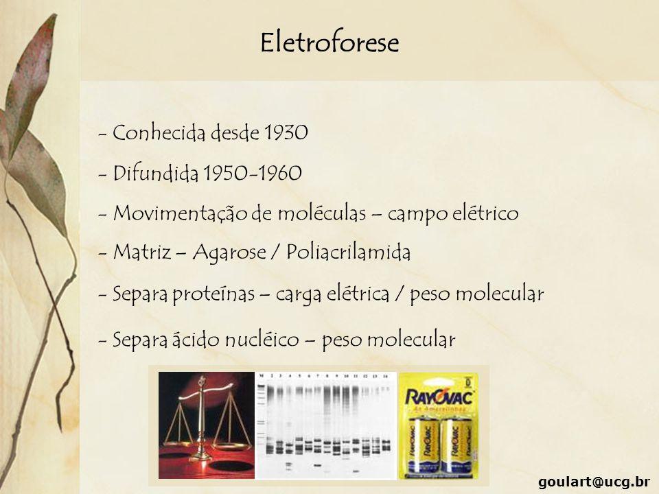 Eletroforese - Conhecida desde 1930 - Difundida 1950-1960 - Movimentação de moléculas – campo elétrico - Matriz – Agarose / Poliacrilamida - Separa pr