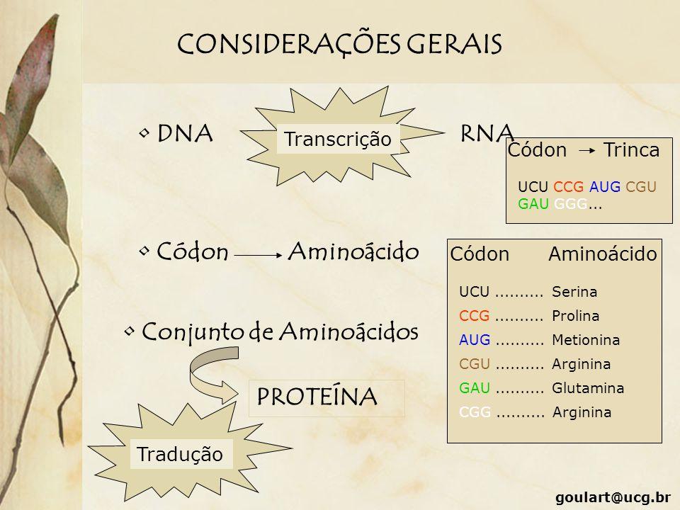 CódonTrinca UCU CCG AUG CGU GAU GGG... CONSIDERAÇÕES GERAIS DNA Transcrição RNA CódonAminoácido CódonAminoácido UCU.......... Serina CCG.......... Pro
