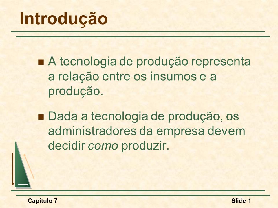 Capítulo 7Slide 1 Introdução A tecnologia de produção representa a relação entre os insumos e a produção.