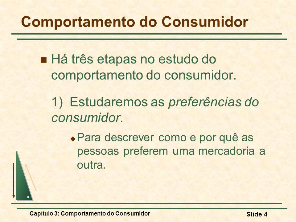 Capítulo 3: Comportamento do Consumidor Slide 4 Comportamento do Consumidor Há três etapas no estudo do comportamento do consumidor. 1) Estudaremos as