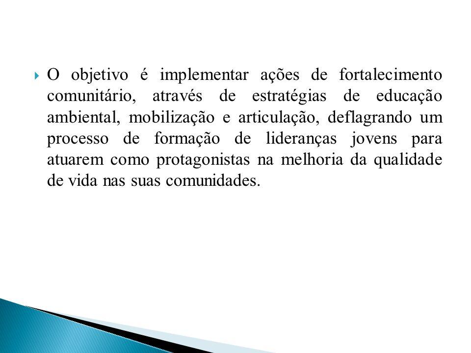 PNUMA (PROGRAMA DAS NAÇÕES UNIDAS PARA O MEIO AMBIENTE); CRESCIMENTO DE GOIÂNIA; ACONTECIMENTOS ENTRE 1971 A 1979.
