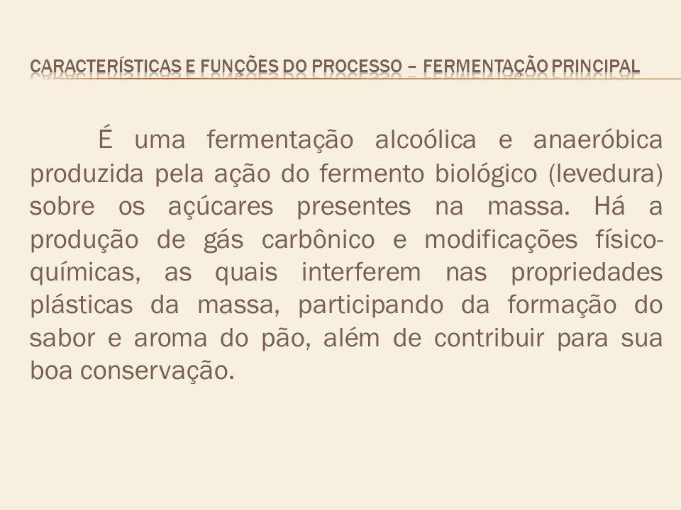 É uma fermentação alcoólica e anaeróbica produzida pela ação do fermento biológico (levedura) sobre os açúcares presentes na massa. Há a produção de g
