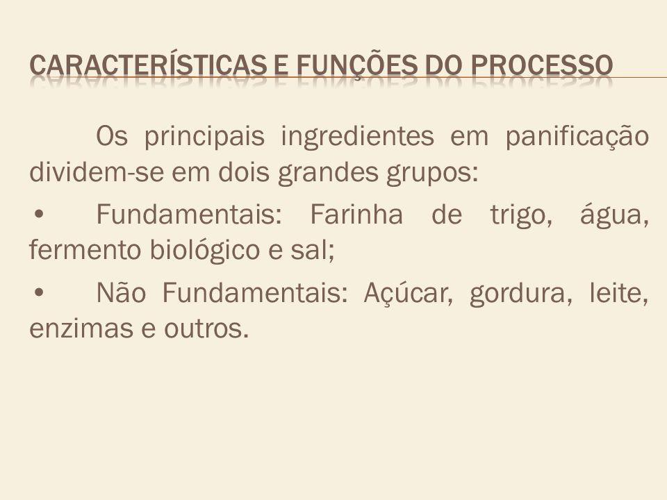 Os principais ingredientes em panificação dividem-se em dois grandes grupos: Fundamentais: Farinha de trigo, água, fermento biológico e sal; Não Funda