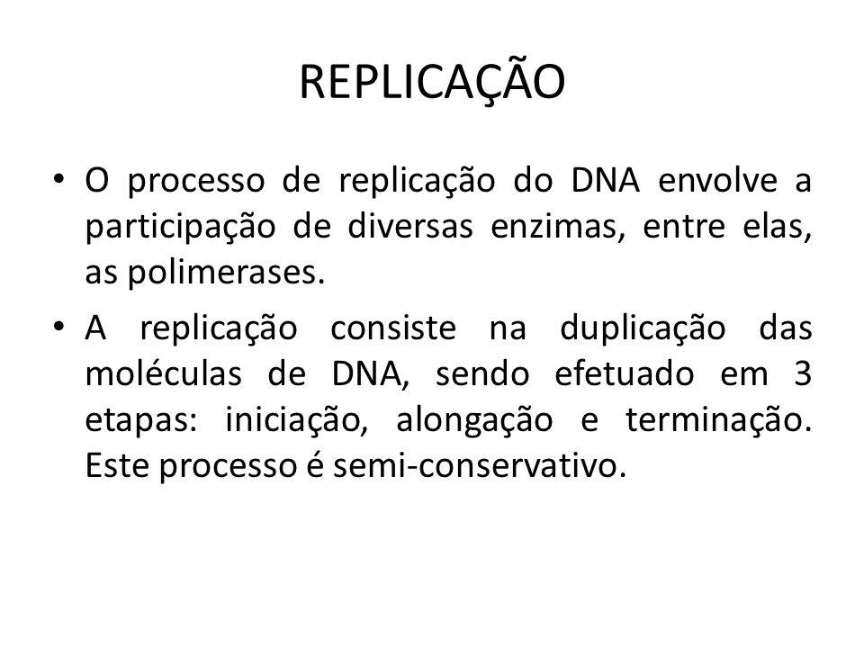 REPLICAÇÃO O processo de replicação do DNA envolve a participação de diversas enzimas, entre elas, as polimerases. A replicação consiste na duplicação