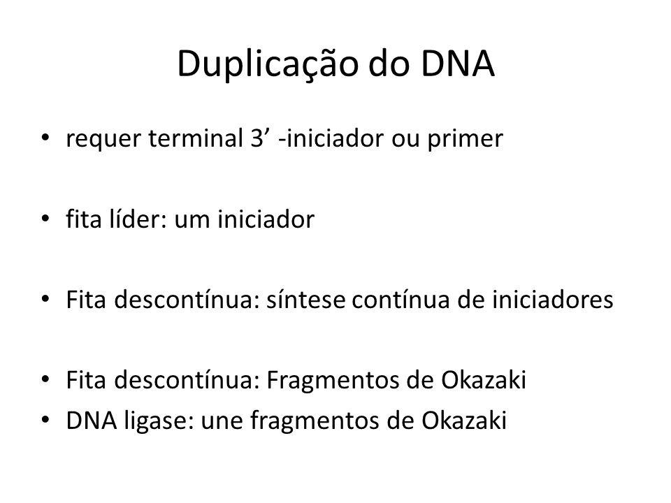 Duplicação do DNA requer terminal 3 -iniciador ou primer fita líder: um iniciador Fita descontínua: síntese contínua de iniciadores Fita descontínua: