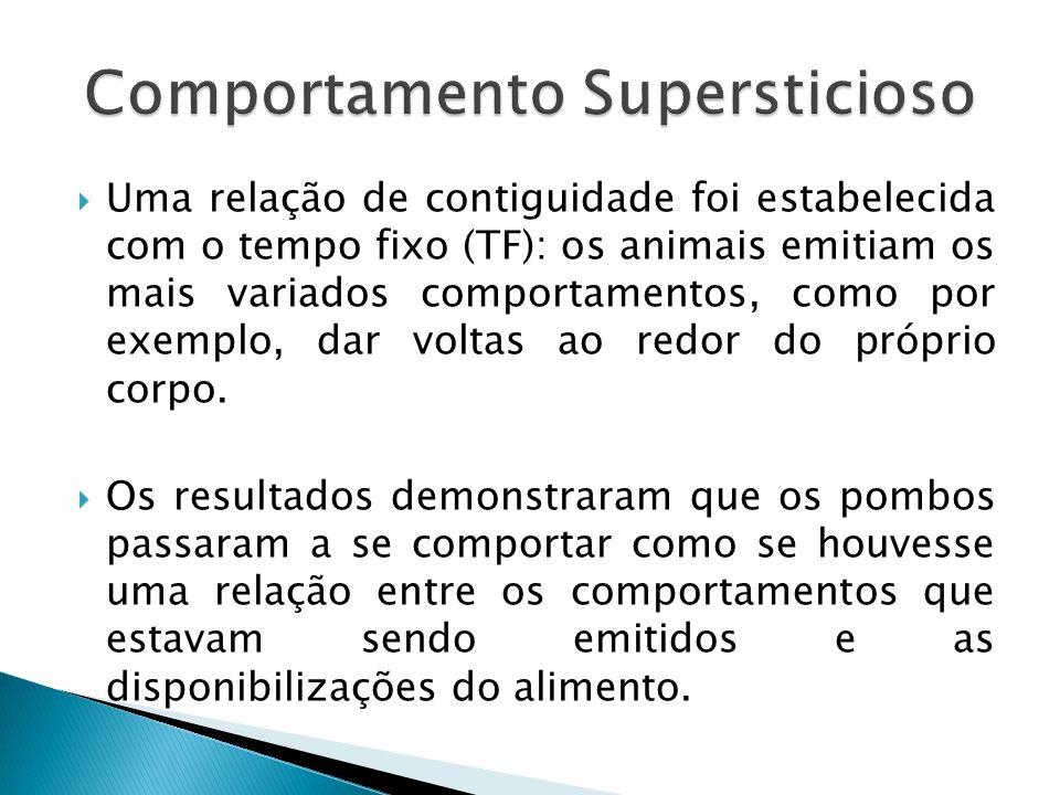 Uma relação de contiguidade foi estabelecida com o tempo fixo (TF): os animais emitiam os mais variados comportamentos, como por exemplo, dar voltas ao redor do próprio corpo.
